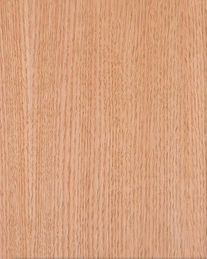 Hrast-Crveni-Ravan-819x1024